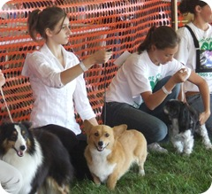 Homecoming Dog show 026