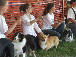 Homecoming Dog show 028